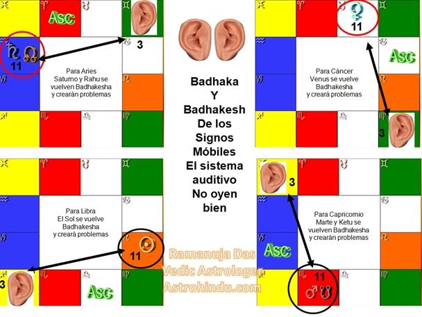 BADHAKA8
